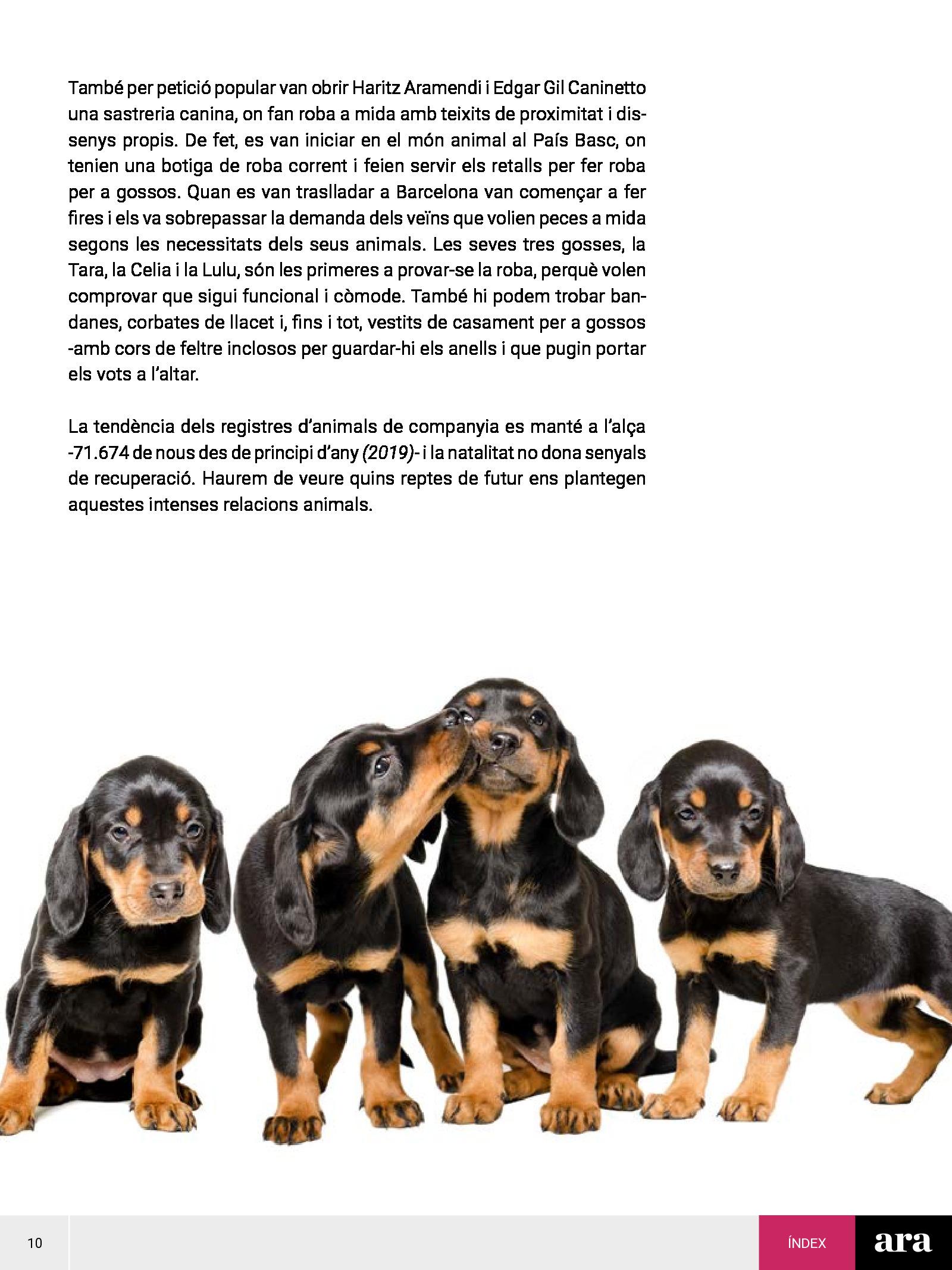 Gossos 2