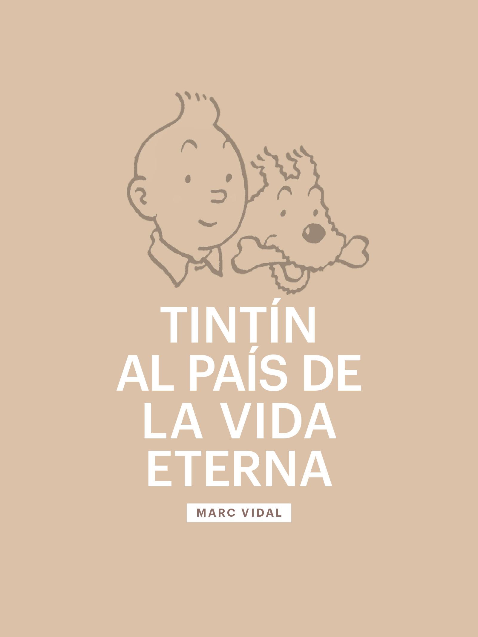 L'afer Tintín 3