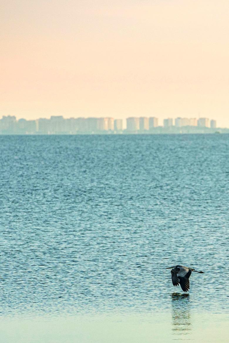 Una imagen del Mar Menor desde San Pedro del Pinatar con los bloques de pisos de la Manga del Mar Menor al fondo.