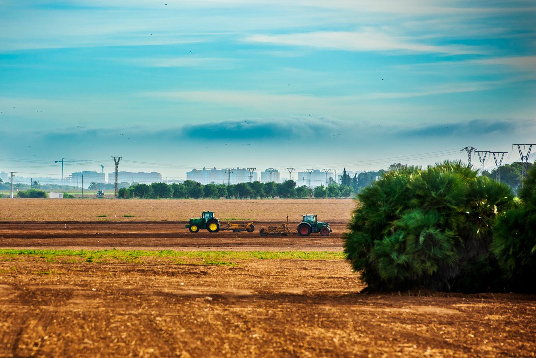 Las hectáreas de regadío se han multiplicado por diez en 40 años y ya son más de 50.000. Los ecologistas calculan que hay unas 12.800 que funcionan de manera irregular.