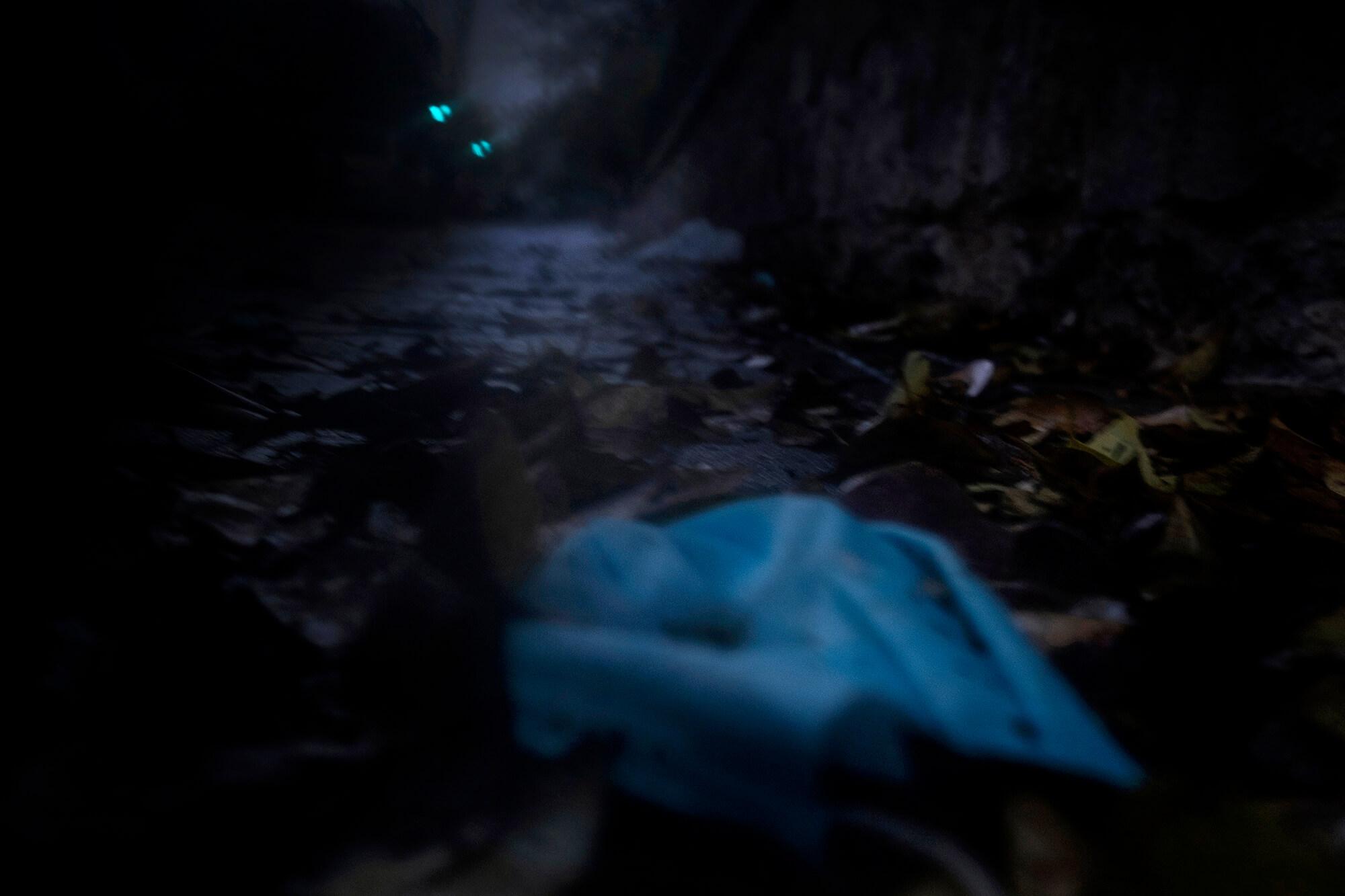 Un solitari carreró al Parc del Retiro de Madrid abraçant la foscor durant els dies més durs del pic de la pandèmia.